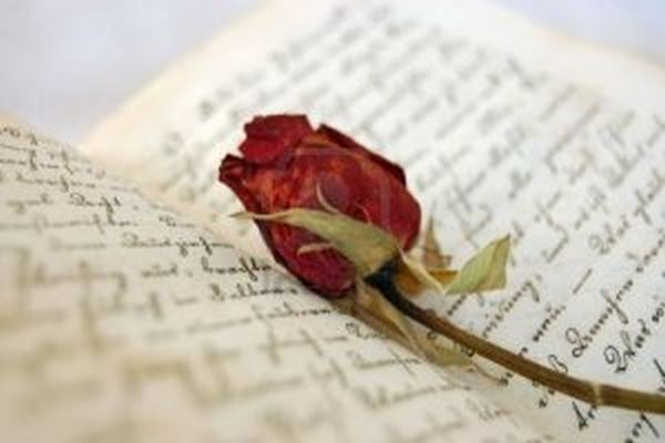 dried-red-rose-on-an-open-old-book