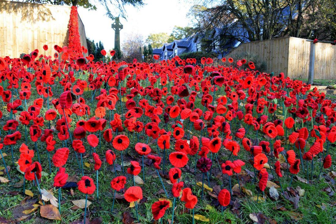 poppies memorial