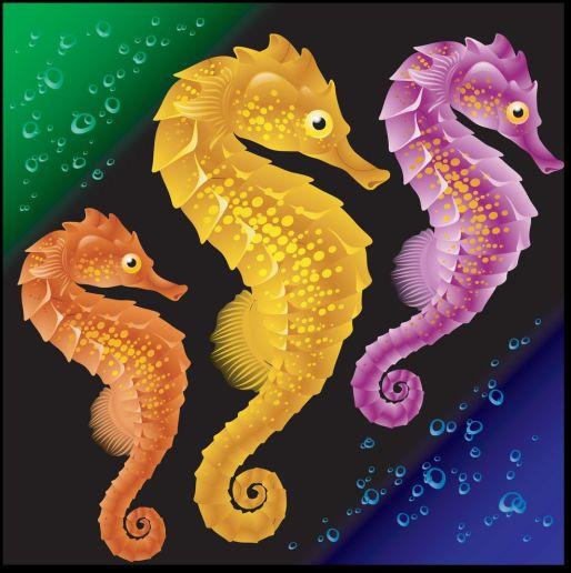 seahorses-vector-173449