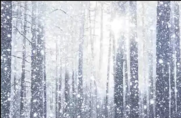 snowflakes(3)
